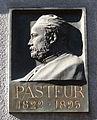 Louis Pasteur par Patey-Strasbourg (2).jpg