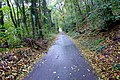 Mühlenweg (Odenthal). Reader-18.jpg