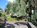 Madeira em Abril de 2011 IMG 1749 (5663767266).jpg