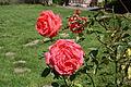 Maison Elsa Triolet Aragon Saint-Arnoult-en-Yvelines 2011 22.jpg
