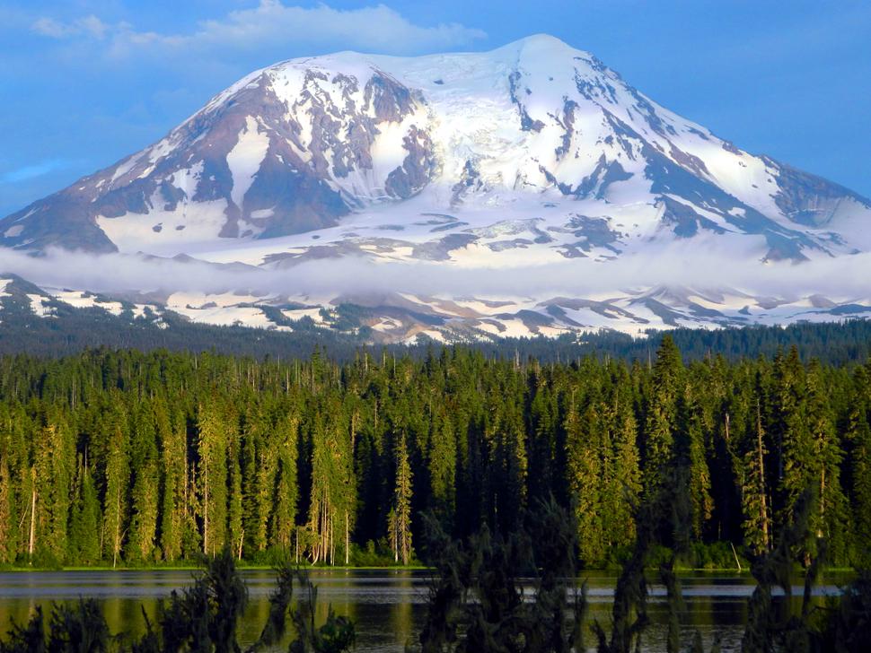 Majestic Mount Adams