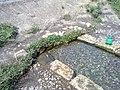 Mammu khora 4 - panoramio.jpg