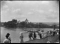 Maori waka hurdle race on the Waikato River at the Ngaruawahia Regatta. ATLIB 287516.png