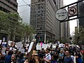 March for Science, San Francisco (33397264483).jpg