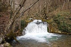 Martie 2009 367.jpg