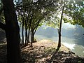 Mata Atlantica Vila Americana- Meeting of Rivers Tatui and Sorocaba -SP - panoramio (9).jpg
