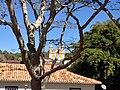Matriz de S. Antônio - Tiradentes - MG - panoramio.jpg