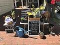 May Day Annapolis 2021 (51150463392).jpg