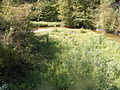 Mehedinți, zona golfului Bahna (34).JPG