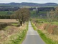 Minor road to Sprouston and the Tweed Valley east of Kelso - geograph.org.uk - 398177.jpg