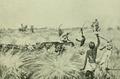 Modern Pig-Sticking (1914) A. E. Wardrop V.png