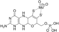 Molybdenum cofactor.png