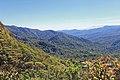 Monteverde Reserve Costa Rica 06.jpg