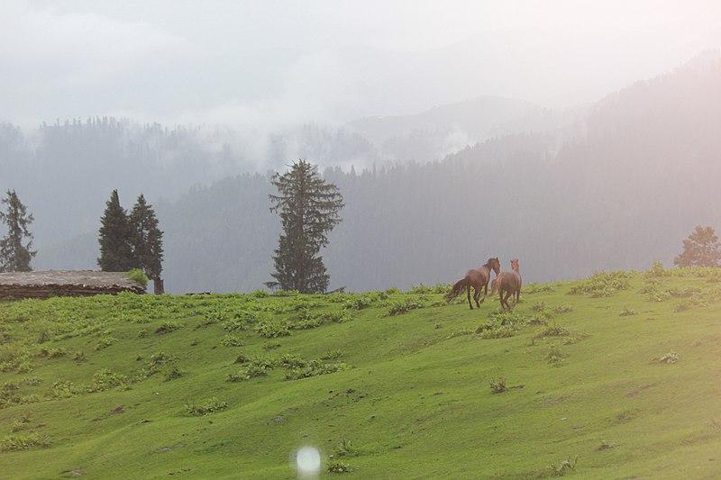 File:Moosa Ka Masalla, Himalaya Pakistan.jpg