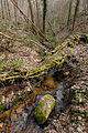 Mountain stream Miallet 2013-04-01 n01.jpg