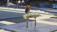 File:NCAA Mens Pommel Horse (2014) Michigan's Sam Mikulak, Team Finals.webm
