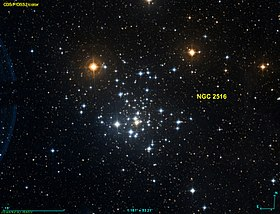 Image illustrative de l'article NGC 2516