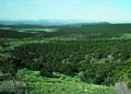 NRCSCO01072 - Colorado (1531)(NRCS Photo Gallery).tif