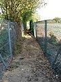 Narrow path between two fences - geograph.org.uk - 1510838.jpg