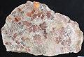 Native copper pods in garnet-pyroxene skarn (Madison Gold Skarn Deposit, Late Cretaceous, 80 Ma; west of Silver Star, Montana, USA) 5.jpg