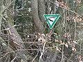 Naturschutzgebiet Fischerweihermoor 04.JPG
