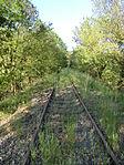 Nebenbahn Finnentrop-Wenholthausen (5777951166).jpg