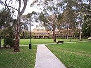 Newman College Quad Dome