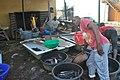 Nigerian Fish sellers (9).jpg