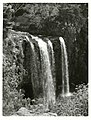 Northland - General Publicity Caption Whangarei Falls, Northland Photographer W Cleal.jpg