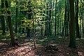 Nottuln, Baumberge -- 2017 -- 3243.jpg