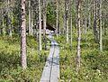 Nyrölä nature trail 9.jpg
