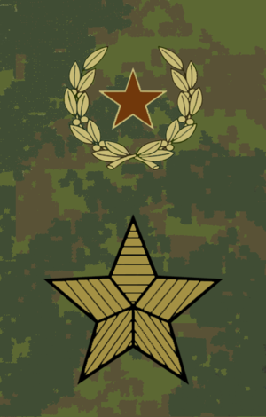 Army ranks and insignia of the Russian Federation - Image: OF09 Army general fu 2013