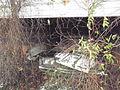 Old cars Palmersville.jpg