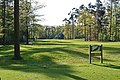 Oldenzaal, Golf course Sybrook - panoramio - Frans-Banja Mulder.jpg