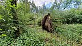 Omgevallen boom Engelermeer 's-Hertogenbosch.jpg