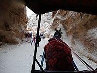 On a horse cart. Petra, Jordan.jpg