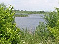 One of many lakes at Stanwick Lakes - June 2009 - panoramio.jpg
