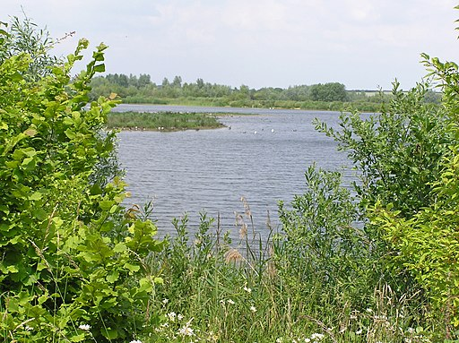 One of many lakes at Stanwick Lakes - June 2009 - panoramio