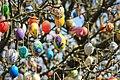 Ostereierbaum, mit 10.000 Eiern geschmückt IMG 9792WI.jpg