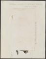 Ostracion cornutus - 1700-1880 - Print - Iconographia Zoologica - Special Collections University of Amsterdam - UBA01 IZ15400267.tif