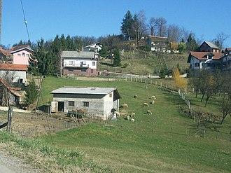 Ante Kovačić - Image: Ovce u Celinama Goričkim