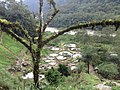PANORAMA - panoramio (2).jpg