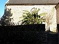 Pacé35 - Église Saint-Melaine 09.JPG