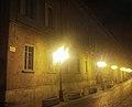 Palazzo Guasco.jpg