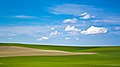 Palouse colors (2).jpg