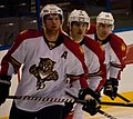 Panthers vs Blues-8374 (6360648927).jpg