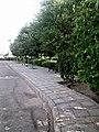 Park chaharmonar 2.jpg