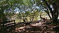 Parque Temático Hacienda Nápoles 30.jpg