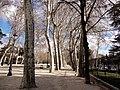 Parque del Retiro (24965729696).jpg