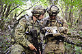 Partner in battle 150914-A-CR001-007.jpg